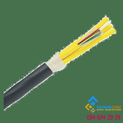 Cáp quang Panduit 4 sợi OM3 10 GbE