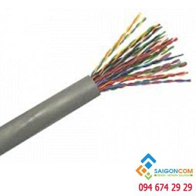 Cáp tín hiệu Alantek Cat5E UTP trong nhà (indoor  - Cable 24AWG, 25-pair - 301-10025E-05GY