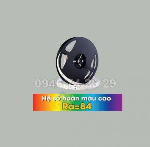 Led dây đa sắc RGBW(3000K) trong nhà 5050, 60 led 19.2W Vinaled