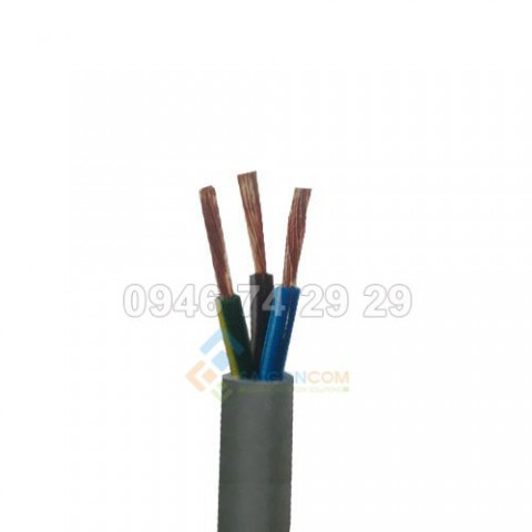 Dây cáp điện ThiPha Cable CVVm 3x10