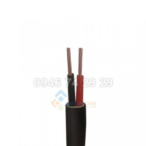 Dây cáp điện ThiPha Cable CVV 2x2.5