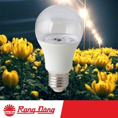 Bóng Đèn LED Bulb chiếu sáng hoa cúc 9W Rạng Đông - HC-A60/9W