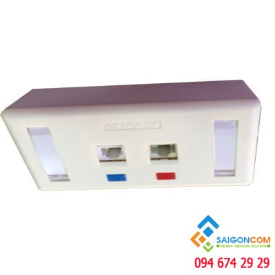 Bộ Wall Plate AMP 2 Port /OUTLET  đôi