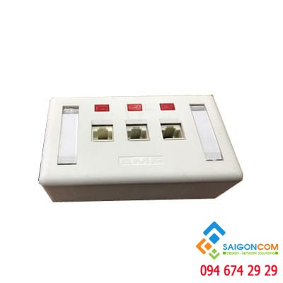 Bộ Wall Plate AMP 3 Port